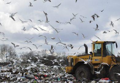 Mainās sadzīves atkritumu apsaimniekošanas kārtība Naujenes pagasta teritorijā