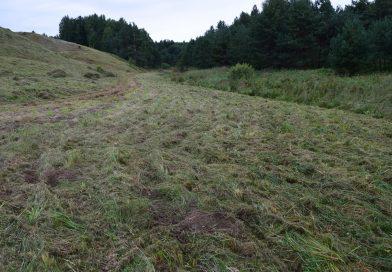 Neapstrādātā lauksaimniecībā izmantojamā zeme Daugavpils novada Naujenes pagastā 2018. gadā